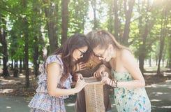 Tre belle ragazze aprono il pacchetto con le guarnizioni di gomma piuma in parco Immagine Stock