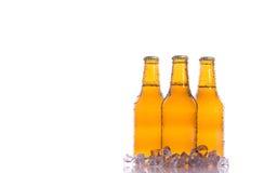 Tre birre fresche con ghiaccio Immagine Stock Libera da Diritti