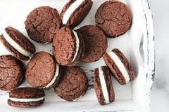 Tre biscotti del cioccolato Immagini Stock Libere da Diritti