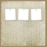 Tre blocchi per grafici per le foto sui precedenti floreali Fotografia Stock
