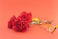 Tre blomma, röda nejlikor på röd bakgrund Arkivfoton