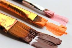 Tre borstar av olikt format som lämnar akrylmålarfärg att bryna orange rosa färgslaglängder Arkivbild