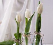Tre bottiglie di vetro con i tulipani immagini stock libere da diritti