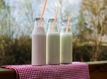 Tre bottiglie per il latte su una tavola Immagine Stock