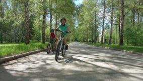 Tre bröder som rider cyklar i solig dag stock video