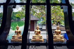 Tre Buddhastatyer framme av den Seema Malaka templet, Colombo Arkivfoton
