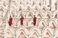 Tre buddistiska noviser arkivbild