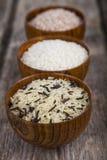 Tre bunkar med olika variationer av ris Fotografering för Bildbyråer
