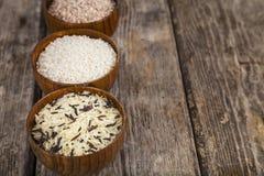 Tre bunkar med olika variationer av ris Royaltyfri Bild