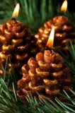 Tre candele gradicono i coni del pino Fotografia Stock Libera da Diritti