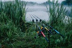 Tre canne da pesca della carpa in baccello della barretta su fondo del lago Fotografia Stock