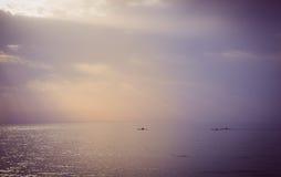 Tre canoe che navigano in mare durante il tramonto Immagine Stock