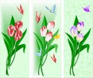 Tre canzoni con un mazzo dei tulipani Fotografie Stock