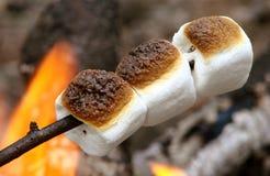 Tre caramelle gommosa e molle che roating sopra il fuoco aperto dell'accampamento Fotografia Stock