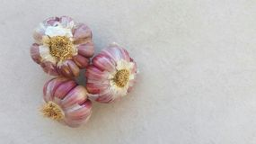 Tre cavoli dell'aglio Fotografia Stock Libera da Diritti