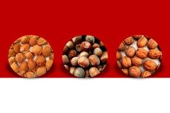 Tre cerchi semplici in pieno dei pozzi, delle nocciole e delle noci dell'albicocca royalty illustrazione gratis