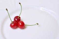 Tre Cherry Arkivbild