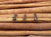 Tre chiodi di garofano Fotografie Stock Libere da Diritti