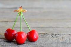 Tre ciliegie luminose isolate su un fondo di legno d'annata con uno spazio per testo Fotografia Stock