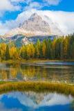 Tre Cime de Lago Antorno en otoño, dolomías, Italia fotos de archivo libres de regalías