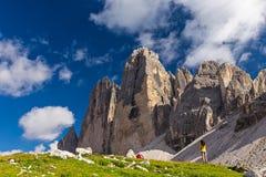 Tre Cime di Lavaredo,白云岩,意大利 免版税库存图片