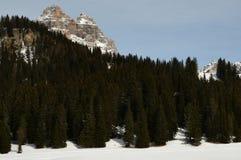 Tre Cime di Lavaredo & x28; Drei Zinnen& x29; 白云岩,意大利 免版税库存照片