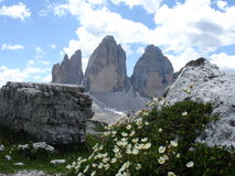 Tre Cime Lavaredo Photo stock