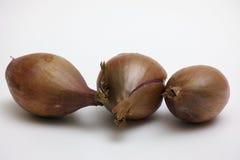 Tre cipolle Fotografie Stock