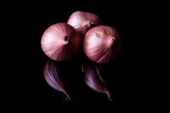 Tre cipolle dello scalogno Fotografia Stock Libera da Diritti