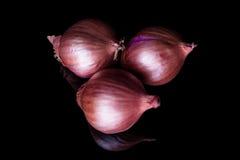 Tre cipolle dello scalogno da sopra Fotografie Stock Libere da Diritti