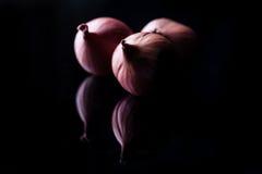 Tre cipolle dello scalogno in ombre Fotografia Stock