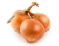 Tre cipolle hanno isolato Immagine Stock