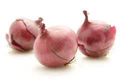 Tre cipolle rosse Immagine Stock