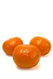 Tre clementine Immagine Stock