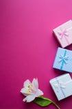 Tre contenitori di regalo con singolo alstroemeria fioriscono sulla parte posteriore di cremisi Fotografie Stock Libere da Diritti