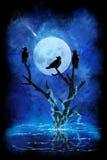 Tre corvi neri Fotografia Stock