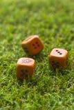 Tre cubi dei dadi sul fondo dell'erba Immagini Stock