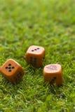 Tre cubi dei dadi sul fondo dell'erba Immagine Stock Libera da Diritti