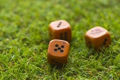 Tre cubi dei dadi sul fondo dell'erba Fotografie Stock Libere da Diritti