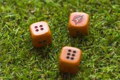 Tre cubi dei dadi sul fondo dell'erba Immagini Stock Libere da Diritti