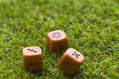 Tre cubi dei dadi sul fondo dell'erba Fotografia Stock