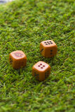 Tre cubi dei dadi sul fondo dell'erba Fotografie Stock
