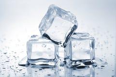 Tre cubi di ghiaccio di fusione fotografia stock libera da diritti
