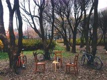 Tre cyklar i parkera nära tre stolar och en tabell under träden parkerar in Royaltyfri Foto