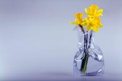 Tre daffodils immagini stock libere da diritti