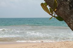 Tre dalla spiaggia fotografie stock