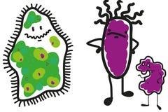 Tre del microbo Immagini Stock Libere da Diritti