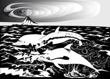 Tre delfini in bianco e nero Immagine Stock Libera da Diritti