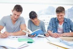 Tre deltagare studerar hard tillsammans arkivbild