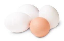 Tre di Brown un e bianchi uovo Fotografie Stock